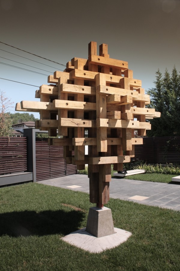 Arbore_2012_lemn stejar