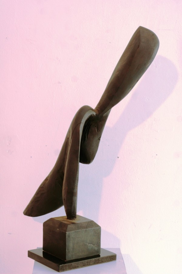 COSMIN MIHAI IATESEN - PLATALEA LEUCORODIA, 2009, Colectia personala dimensiuni 20 x 60 x 75 cm tehnica mixta