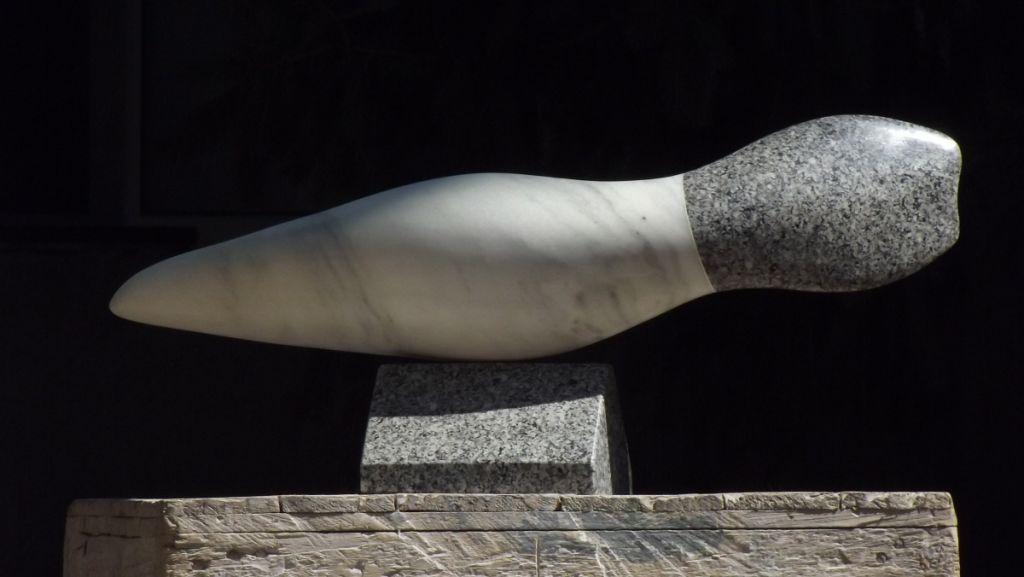 Forma acvatica III - 2012, marmura-granit, 62x20x13cm