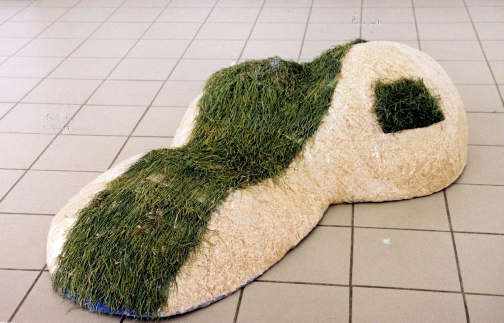 Mihai Verestiuc, Deal, 2005, fier sudat, rumegus, iarba, plastic, 170x100x50