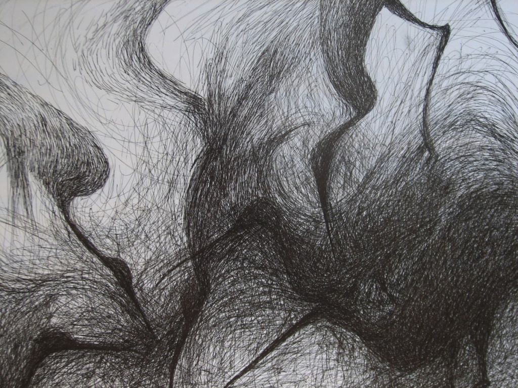 Pasari - tus-penita pe hartie, 50x60cm , 2009