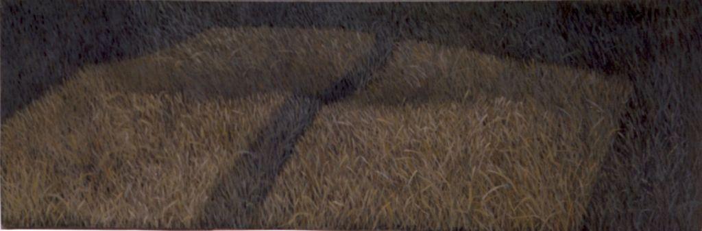 Zona_lumina unei ferestre pe iarba2, ulei pe panza .