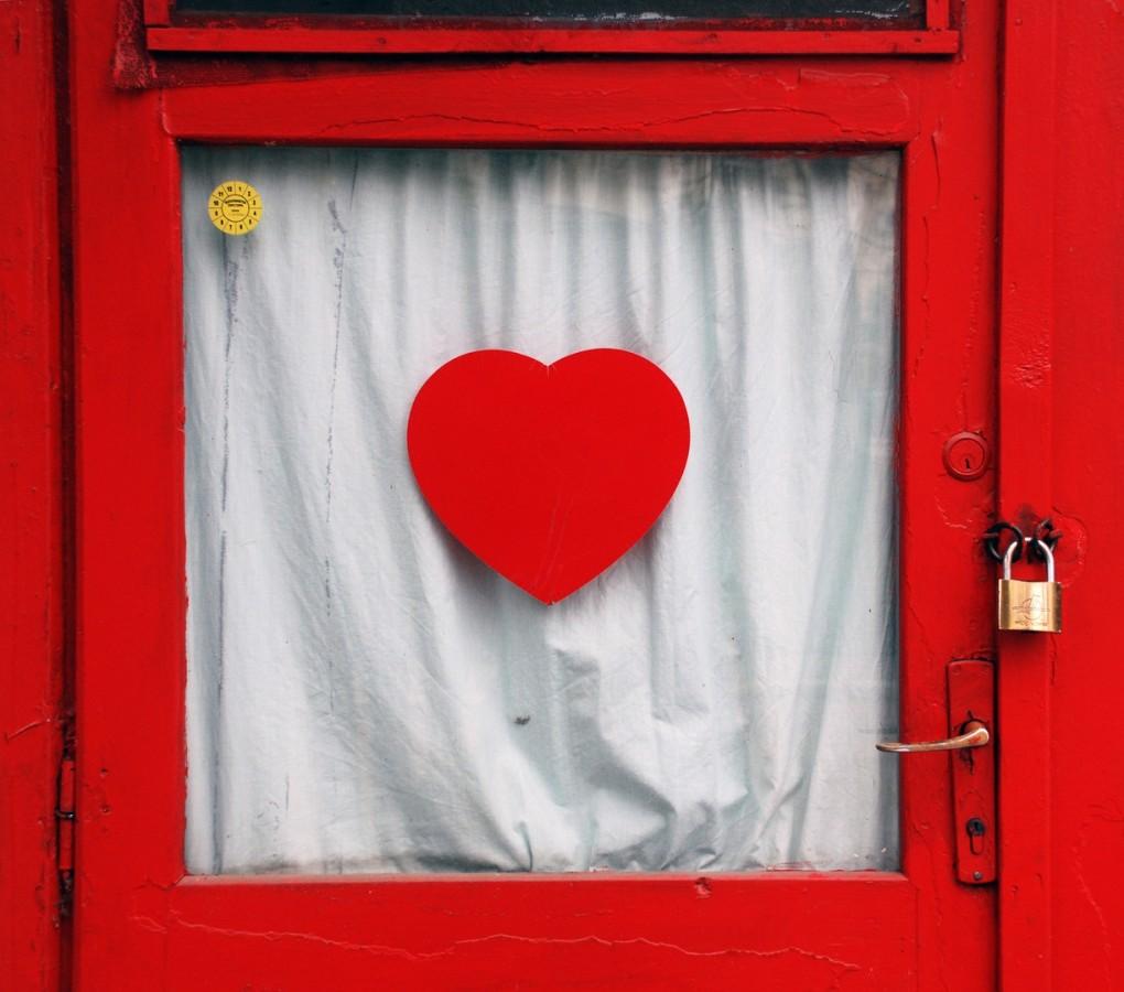 deschide-ti ori deschide-mi inima- Violeta Radu (C)-ANUAR .